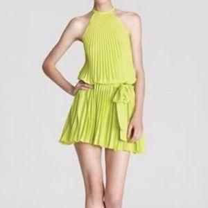 NWT Alexis Dress